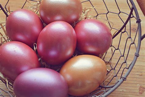 images fruit food produce vegetable color
