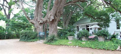 the gardeners cottage the best banting restaurants in cape town