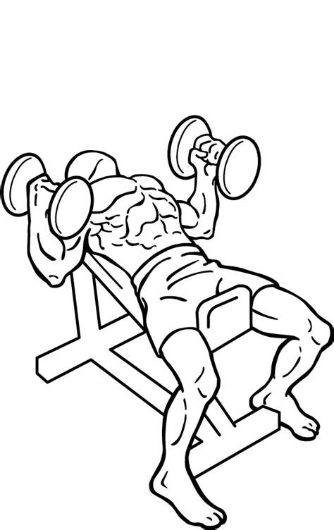 incline bench press grip file hammer grip incline bench press 2 png wikimedia commons