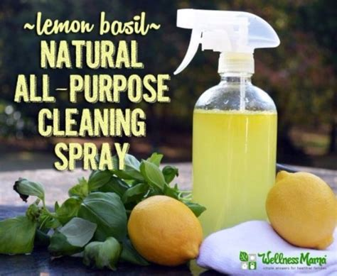 all natural upholstery cleaner 41 best homemade cleaner recipes diy joy