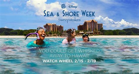 Will Of Fortune Sweepstakes - wheel of fortune disney sea shore week sweepstakes winzily