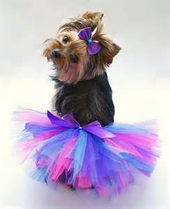 Items similar to sale trendy hot pink purple and blue dog tutu and
