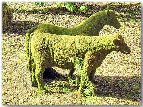 animal topiaries for sale 1000 images about willow sculptures and topiaries to make