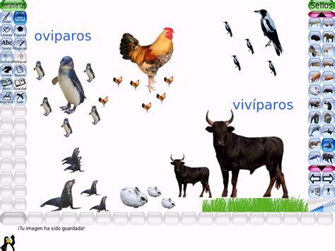 imagenes animales viviparos figuras de animales oviparos y viviparos imagui