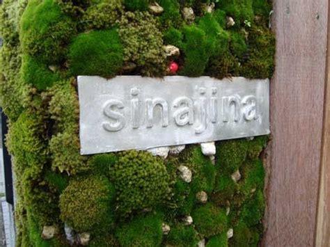 vertical moss garden on shop cool ideas