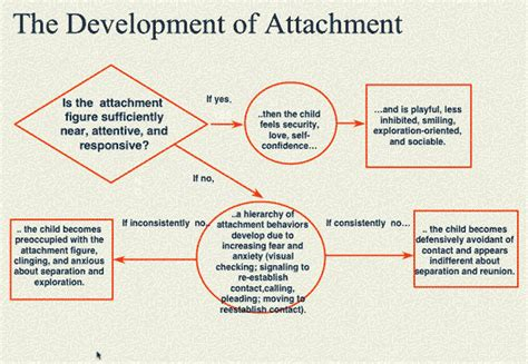 attachment pattern quiz integral options cafe attachment theory in clinical
