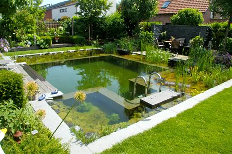 backyard paradise small swimming pool ideas and pictures hgtv s decorating