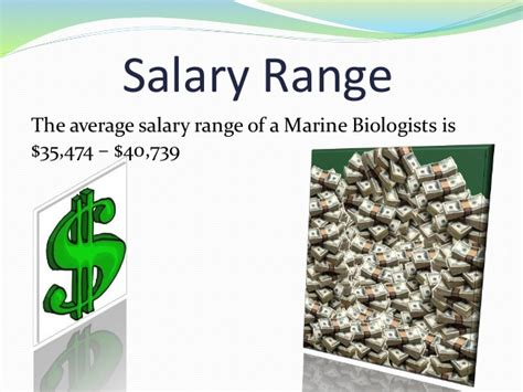 Average Salary Marine Biologist by P Marine Biologist