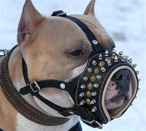 puppy muzzle muzzles by breeds wire basket muzzle leather muzzles cage muzzles