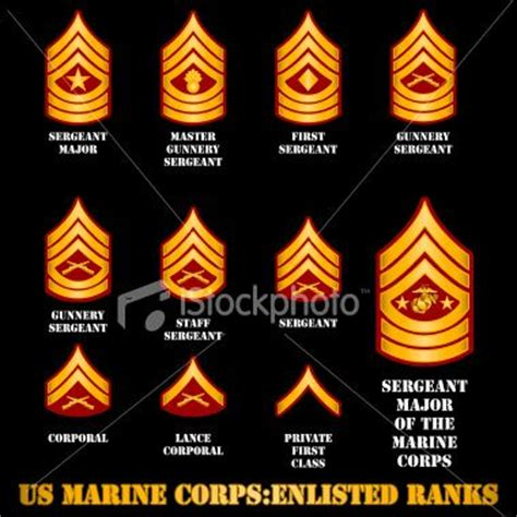 marine corps ranks marine corp ranks after of years of living in a military