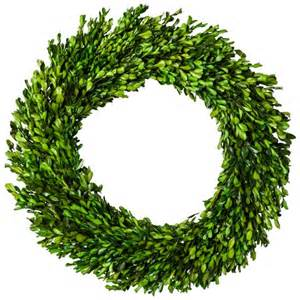 preserved boxwood leaves wreath green 21 25 quot s target
