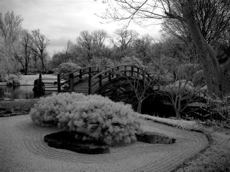 japanese rock garden pictures 17 peaceful pictures of japanese rock gardens