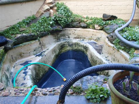 how to clean a backyard pond pond cleaning quick service calls by any pond limited