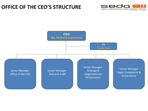 Ceo S ppt office of the ceo s structure powerpoint