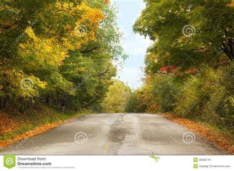 el camino de los 8466647945 paisaje del oto 241 o con el camino y los 225 rboles hermosos foto de archivo imagen de paisaje