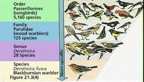 biological diversity i