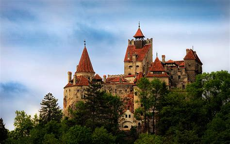 transylvania dracula castle transylvanian cauliflower casserole with cheese global