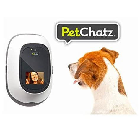 treat dispenser with petchatz review treat dispenser with for dogs and cats or