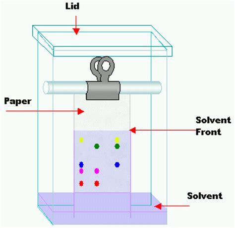 couche paper definition paper chromatography wikipedia