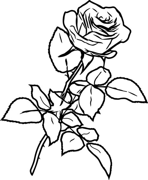 www coloring ink coloring pages www pixshark com images galleries