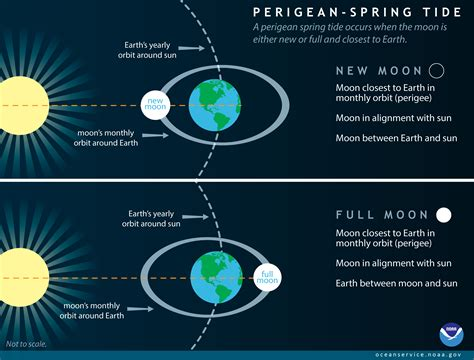 what is spring what is a perigean spring tide