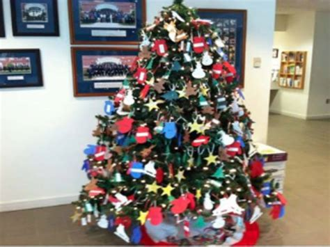 awesome picture of christmas trees natick cut your own