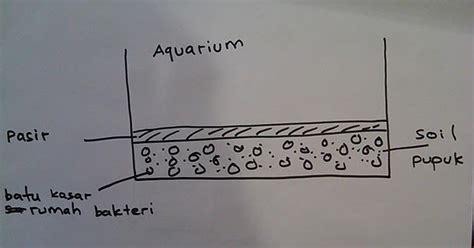 Pupuk Dasar Aquascape Bocor aquascape design cara pengaturan substrat awal