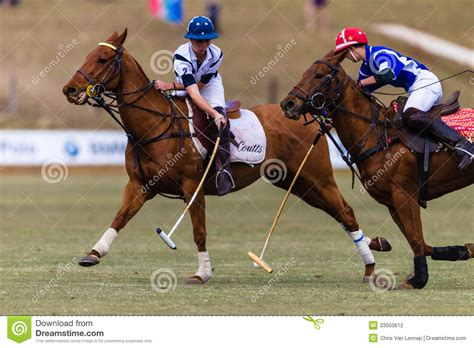 More Ponies For Polo by Polo Players Ponies Play Editorial Photography