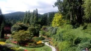 giardini incantati giardini incantati insonniamarina