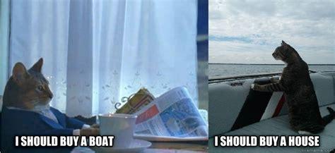 i should buy a boat reddit livememe sophiscated cats