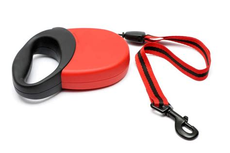 retractable leash are retractable leashes safe for dogs follow these safety
