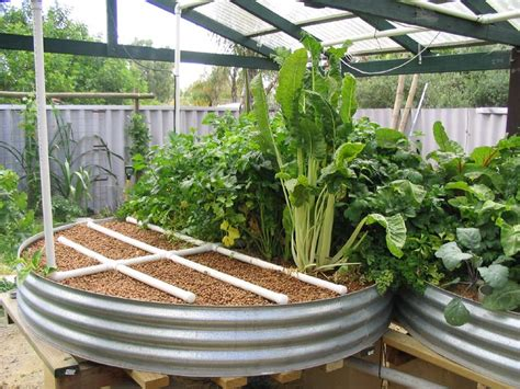 aquaponic backyard type of systems backyard aquaponics