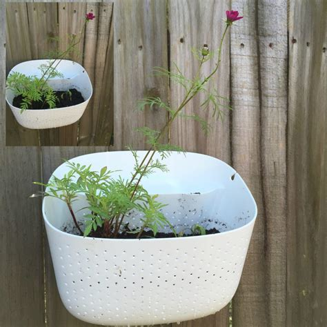 Living Wall Planter Woolly Pocket by The Woolly Pocket A Living Wall Planter