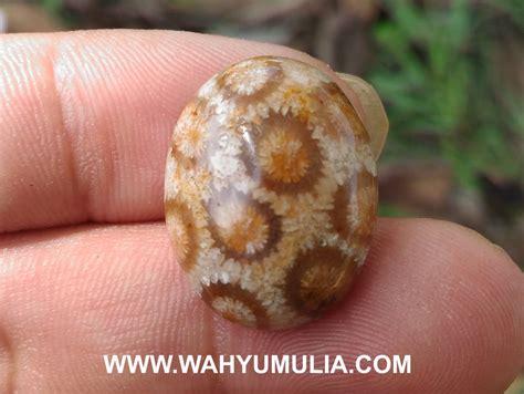 Batu Teratai Coklat batu akik sarang tawon madu asli kode 521 wahyu mulia