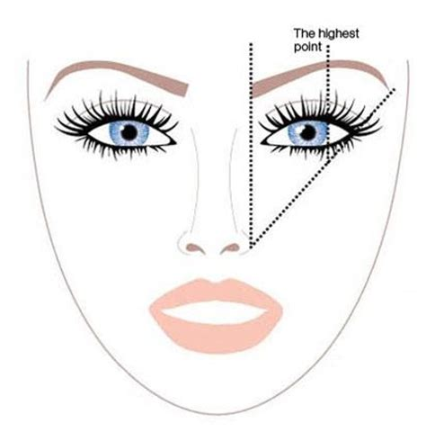 a visual guide to eyebrow shapes eyebrow shape guide eyes pinterest eyebrows eyebrow