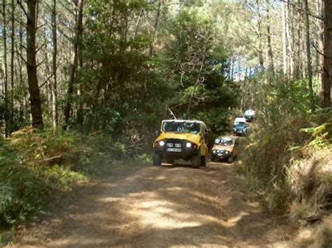 205 Jeep 1997 Front Signal Lu Sinyal 333 1625ptu Vc jeep tour sintra prova de vinhos 1 2 dia