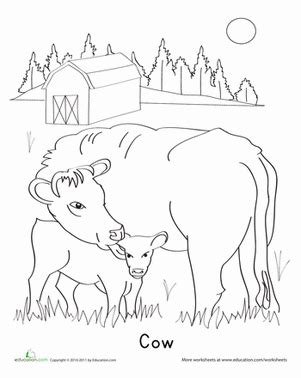 coloring pages of cow and calf calf coloring page education com