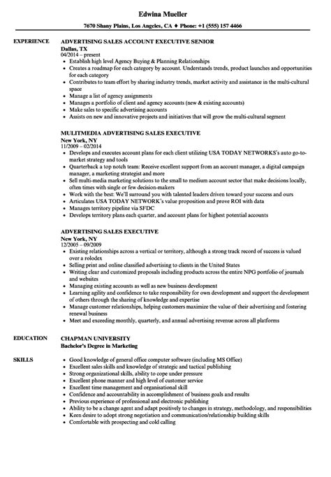 resume template for sales executives advertising sales executive resume sles velvet