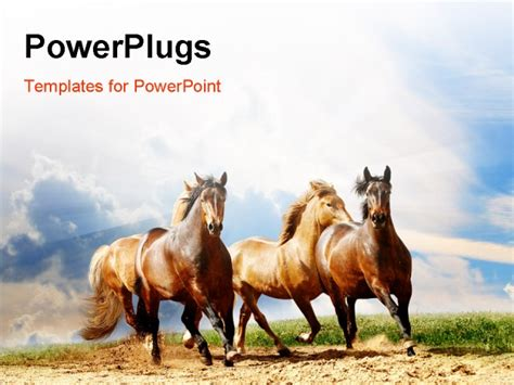 powerpoint themes horse horse backgrounds for powerpoint images