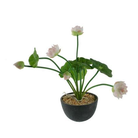 Flowerpot Le by Flowerpot Avec La Fleur Blanche D 233 Coration De La Maison