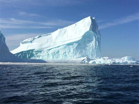 boat tours st john s nl iceberg in st john s harbour picture of iceberg quest