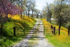 backyard photography central valley california on pinterest landscape art