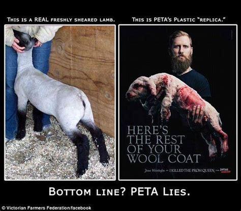 Peta Memes - ask a farmer addressing peta s anti wool caign