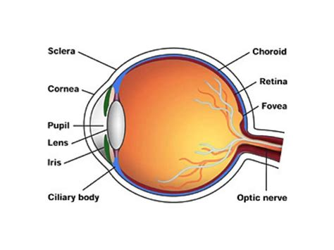 Eye Diagram Gives Us An Idea Of