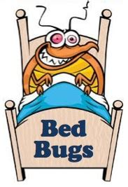 bed bug cartoon course lp kelly nurse