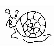 Printable Animal Snails Coloring In Sheets For KidsFree