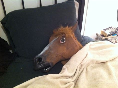 horse head in bed random netninja com