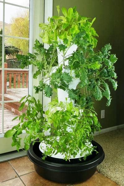 foody  hydroponic system foody vertical gardens