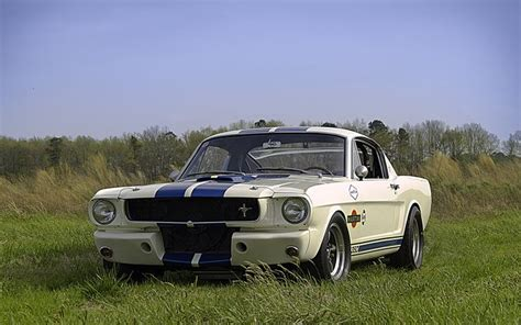 64 mustang shelby 65 shelby gt350 r mustangs