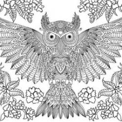 coloring pages for adults difficult owls 10 difficult owl coloring page for adults coloring pages